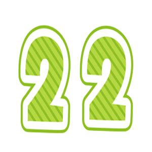 ソウルナンバー22