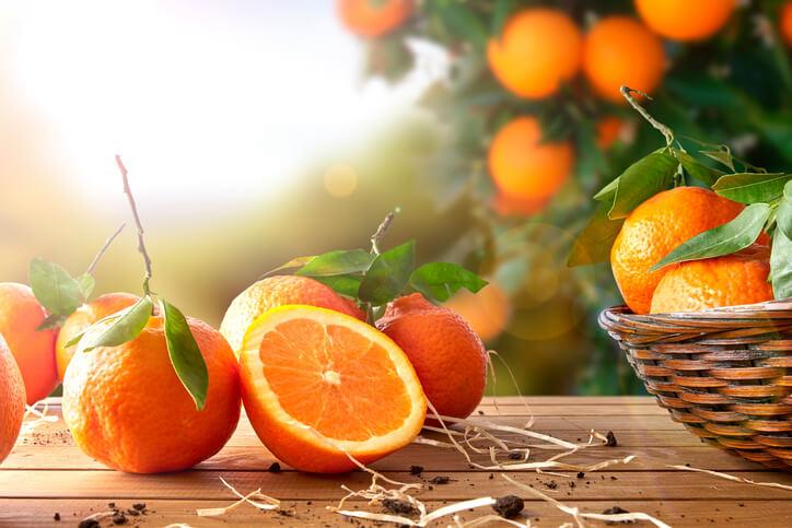 しいたけオレンジ