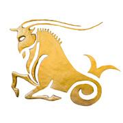 インド占星術 山羊座
